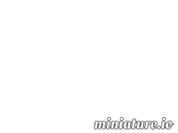 Arena Of Fun